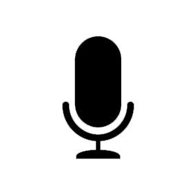 Mikrofon pokładowy